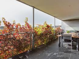 best price on sorrento beach house in mornington peninsula reviews