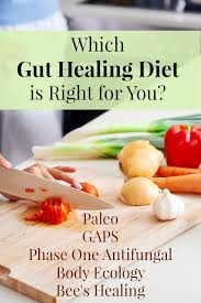 82 ways to heal your gut tradtional cooking