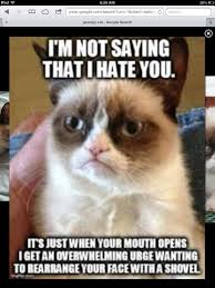 Mere Cat Meme - umm another way of saying i hate you hahaha pinterest