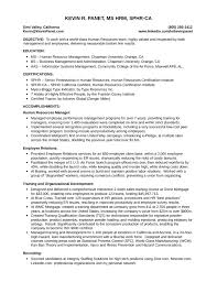 Mckinsey Resume Template Design Resume Templates Downloads Best Report Ghostwriter Sites