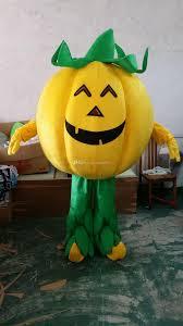 vegetable pumpkin cartoon dolls mascot costumes props costumes