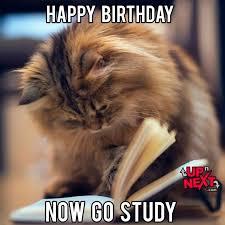Birthday Meme Cat - happy birthday meme funny 30 naughty birthday memes cake meme