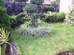 backyard landscape ideas on a budget beautiful easy midcentury