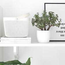 Ikea Plant Ideas by Black And White And Green Plants Ikea Risatorp Basket Room To