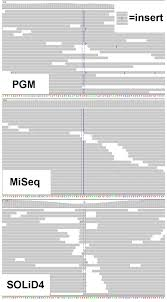 improving indel detection specificity of the ion torrent pgm