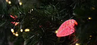 holiday lighting supplies led christmas lights annapolis severna