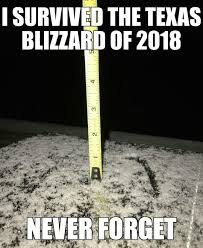 Memes About Snow - put me like snow in texas