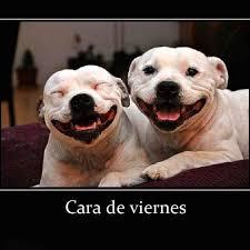 imagenes feliz viernes facebook optica chiche feliz viernes facebook