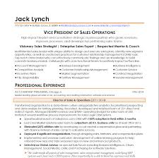 Resume Samples In Sales And Customer Service by Samples Vp Of Sales Operations Brand Your Career