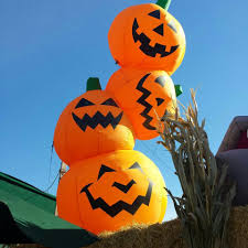 halloween pumpkin patch and petting zoo windmill farms produce
