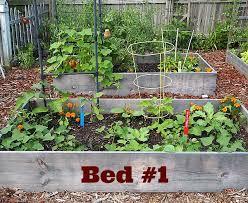 44 best my vegetable garden images on pinterest vegetables