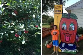 2016 u pick apple orchards near des moines dsm4kids