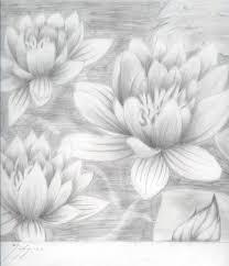 lotus flowers sketch by vamp666akuma on deviantart