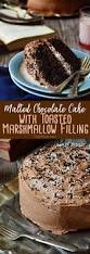 malted chocolate cake with toasted marshmallow filling