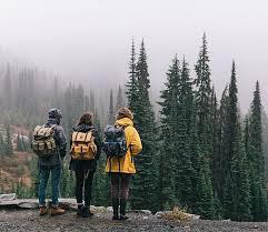 574 best adventure images adventure awaits travel