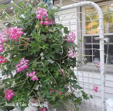 garden gate flowers junk chic cottage garden tour anyone
