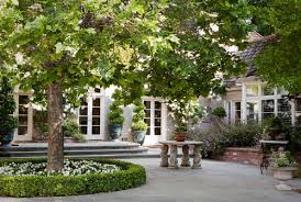 Patio Around Tree What Kind Of Boxwoods Are Used Around The Tree