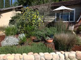 when to prune native plants sustainable landscaping with native plants