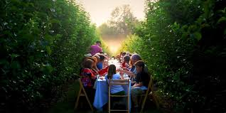 Field To Table Catering Farm To Table Dining Experiences Visit California