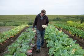 permafrost farming it u0027s possible modern farmer