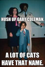 Gary Coleman Meme - hush up gary coleman a lot of cats have that name black