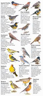 Washington Birds images Birds of washington quick reference publishing jpg