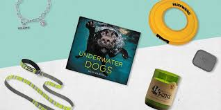 best gifts best gifts for dog askmen
