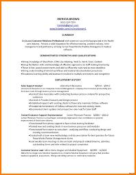 exle resume summary of qualifications customer service summary exle resume summary for customer service