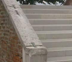 piombatura marmo piombo piombatura di un arco su pozzo in pietra estroso