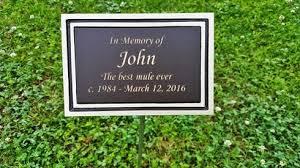 outdoor memorial plaques garden memorial plaques spurinteractive