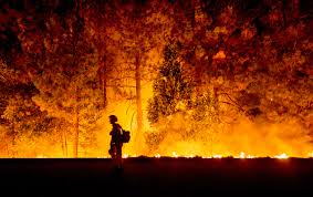 California Wildfires Valley Fire by Record Drought Hastens Dramatic Spread Of California Wildfires