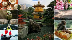 off the beaten path 15 unusual things to do in hong kong nomadbiba