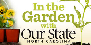 Gardening Tips For Summer - landscaping tips for summer u2013 our state magazine