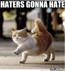 Haters Gonna Hate Meme - haters gonna hate by vocaloidmeme meme center