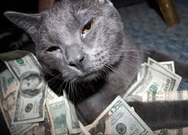new york woman leaves 300 000 to two cats