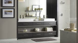 Contemporary Bathroom Vanities Modern Walnut Bathroom Vanity Omega Cabinetry