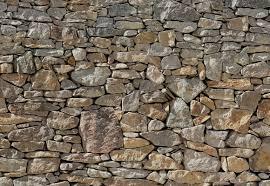 loon peak chicopee 8 piece stone wall mural reviews wayfair default name