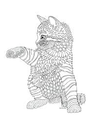 coloring page of a kitty coloring page cat cat colouring page coloring page catholic