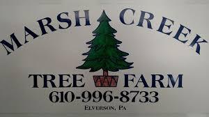 marsh creek tree farm home