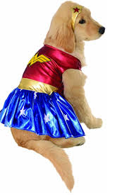 Pet Cat Halloween Costumes 25 Cute Dog And Cat Halloween Costumes Best Ideas For Pet