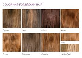 exles of hair websites copper hair color chart choice image free any chart exles