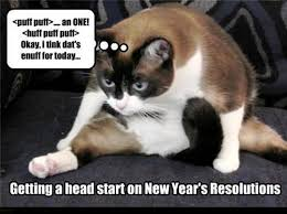 New Memes Today - 15 new year s memes for a purrfect 2018 i can has cheezburger