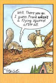 humorous birthday cards flying squirrel eric decetis humorous birthday card by pictura