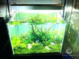 marineland aquatic plant led lighting system w timer 48 60 marineland aquatic plant led light with timer lights planted