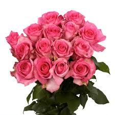 Pink Color Globalrose Fresh Pink Color Roses 100 Stems Attache Medium 100