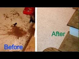 How To Remove Sauce Stains Sauce Upholstery And Carpet Stain Removal Rochester Ny Soy Sauce Removed By Carpet Smart