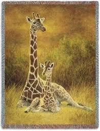 8 best african safari theme decorating ideas images on pinterest