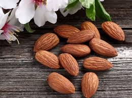 Minyak Almond 11 khasiat minyak almond untuk kesehatan dan kecantikan khasiat