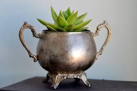 6 unique succulent planter ideas angean angean