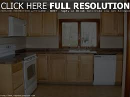 Small Kitchen Interior Design Ideas Indian Style Kitchen Interior Design Kitchen Design
